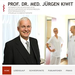Kiwit_web